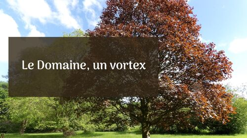 Le Domaine, vortex collectif ou pilier civilisationnel
