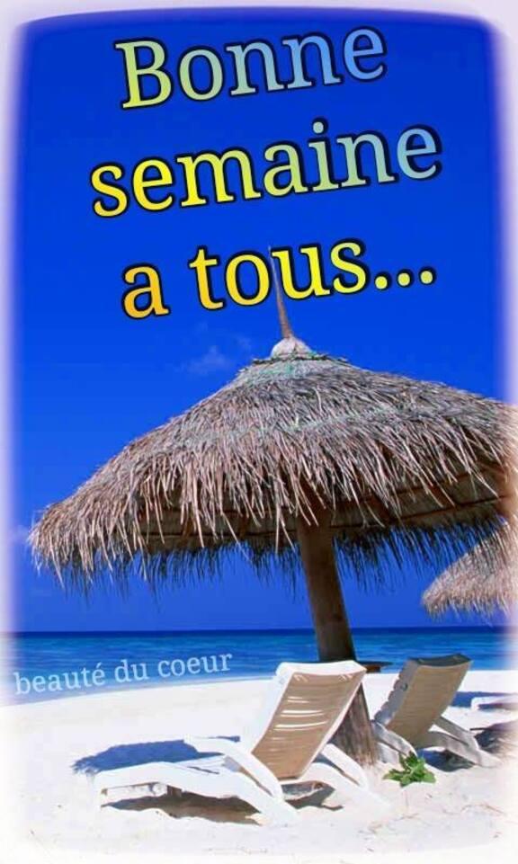Bon Dimanche ...