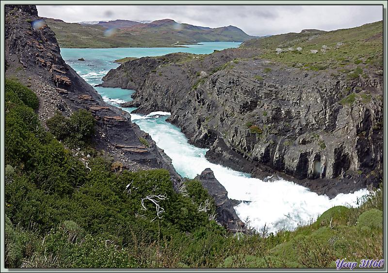 Salto Grande sur le Rio Paine : les cascades du déversoir du Lago Nordenskjöld dans le Lago Pehoe - Parque Torres del Paine - Patagonie - Chili