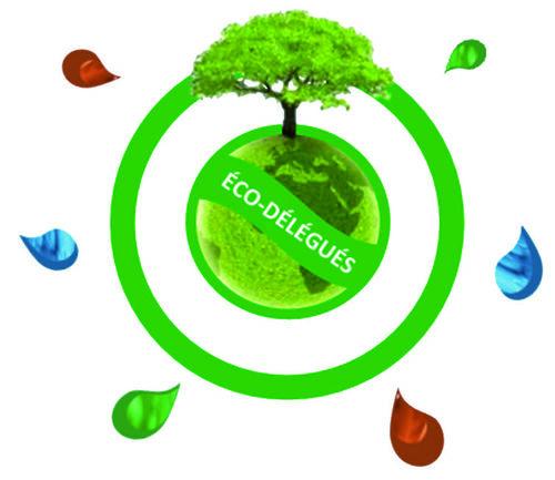 Qu'est-ce qu'un éco-délégué au collège?