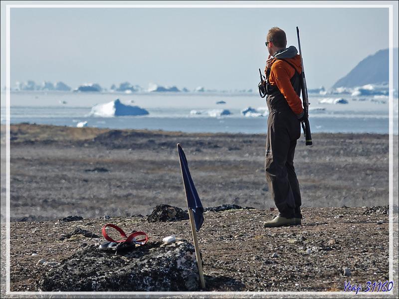 """Cryoturbation ou géliturbation : création de """"sols polygonaux"""" ou """"cercles de pierres"""" sur le permafrost - Savissivik - Groenland"""