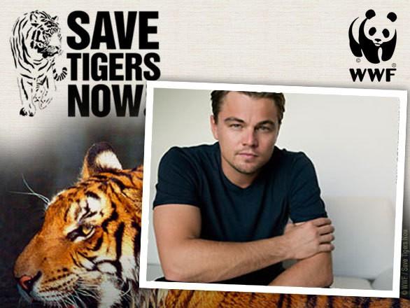 save-tigers-wwf-dicaprio-1.jpg