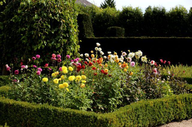 Concours International de Roses Nouvelles du Roeulx 2016 - Baptême et autour de l'Orangerie