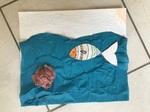 les poissons de CM1 A