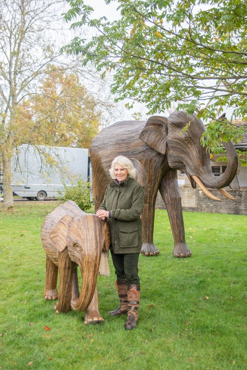 @elephantfamily,