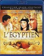 L'Egypte du cinéma