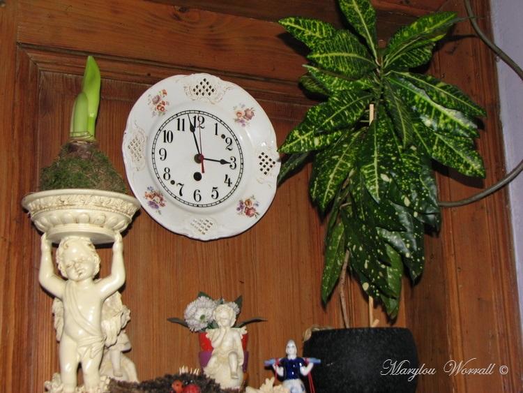 Ingersheim : Gaby aime les plantes