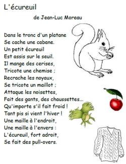 Poésie CE1 : l'écureuil