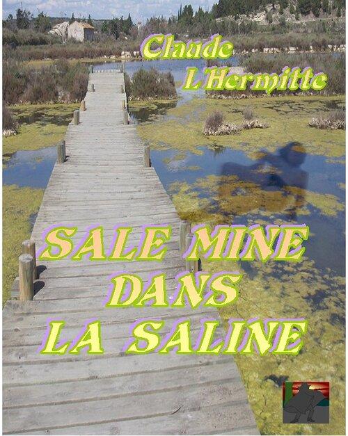SALE MINE DANS LA SALINE