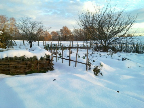 La neige a recouvert le jardin.