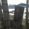 OKORO 16 02 2009