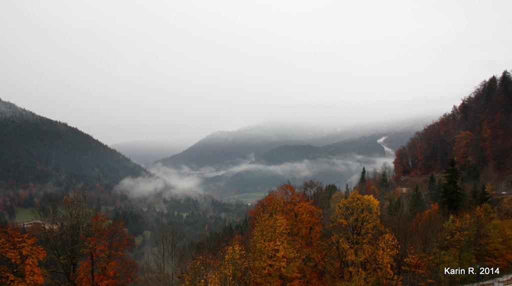 Traînée de brume dans la vallée