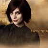 New Moon : wallpaper Alice