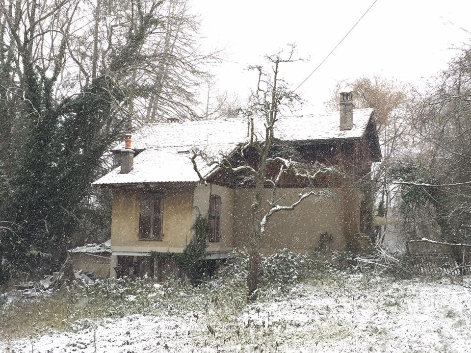 L'image contient peut-être: arbre, maison, ciel, neige, plante et plein air