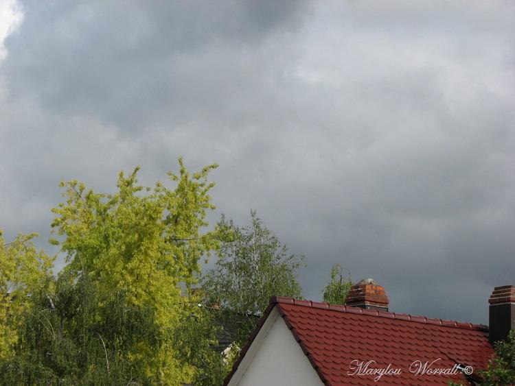Ciel d'Alsace 327