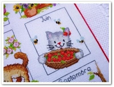 chat-de-juin.jpg