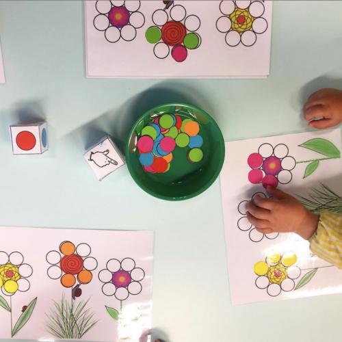 Jeu des fleurs : Dénombrement / couleurs