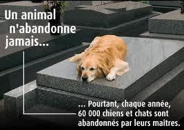 Non à L'Abandon...