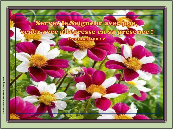 Servez le Seigneur avec joie - Psaumes 100 : 2