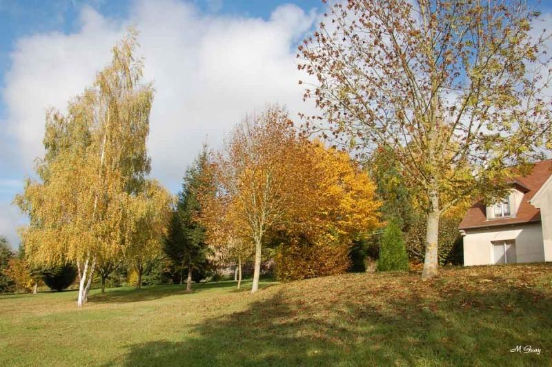 automne-terrain-6268.jpg