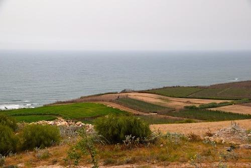 D'Algéciras à
