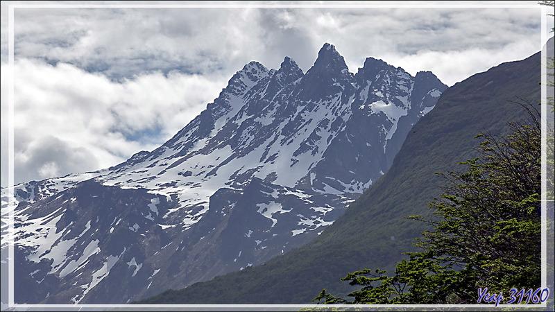 Nous sortons de Ushuaïa pour aller vers la Vallée Carbajal et le lac Escondido - Tierra del Fuego - Argentine