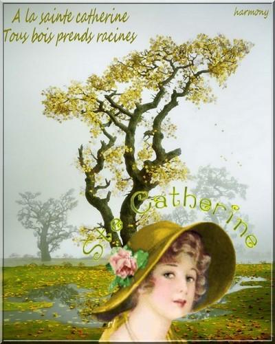 25 NOVEMBRE : SAINTE CATHERINE