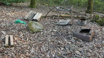 Sociotopes en milieu boisé