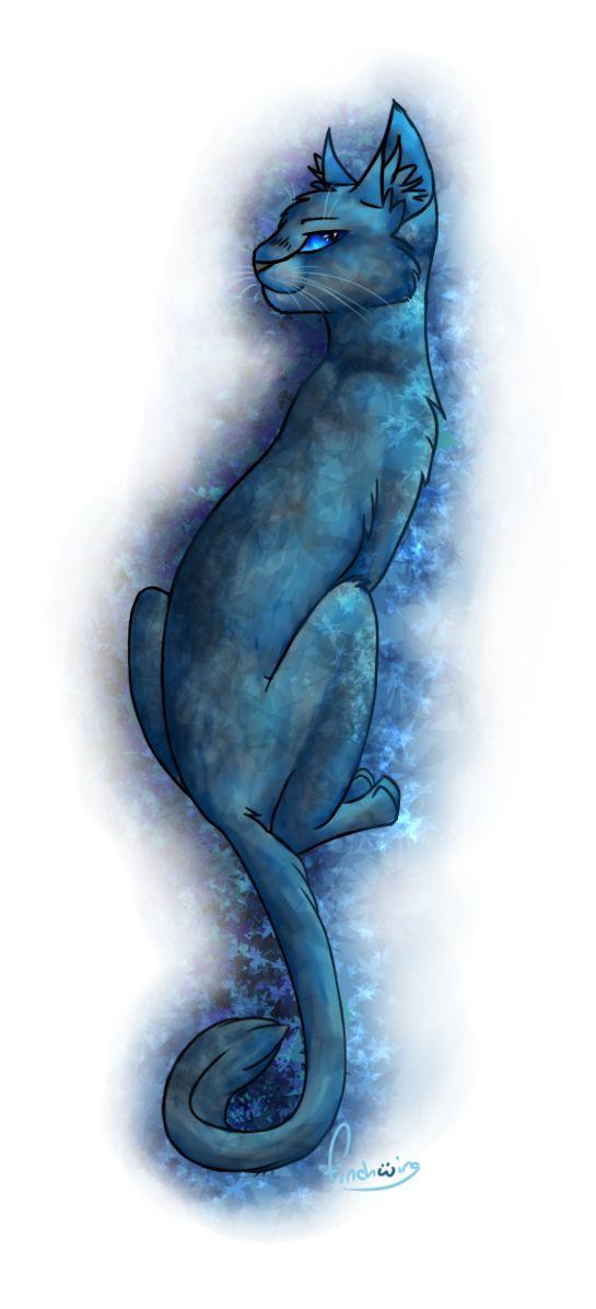 Images d'Étoile Bleue