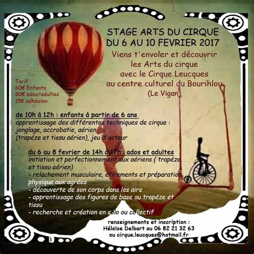 stage arts du cirque fevrier 2017