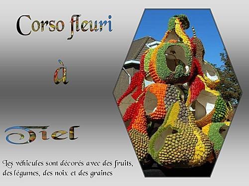 Corso-fleuri-Tiel--copie-1.jpg