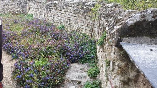 Les jardins du Prieuré Saint Macé