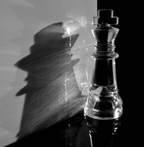 L ombre du roi.
