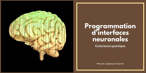 Programation d'interfaces neuronales
