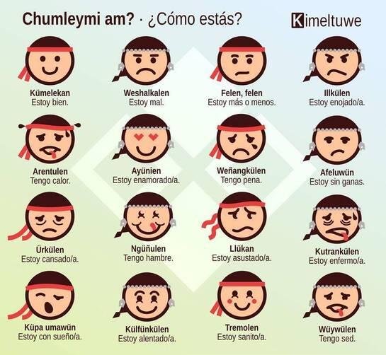 """Résultat de recherche d'images pour """"mapuche simbolos"""""""