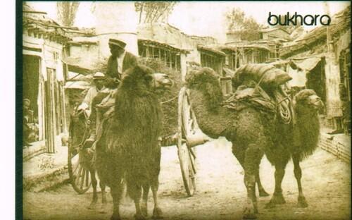 Nous quittons Boukhara
