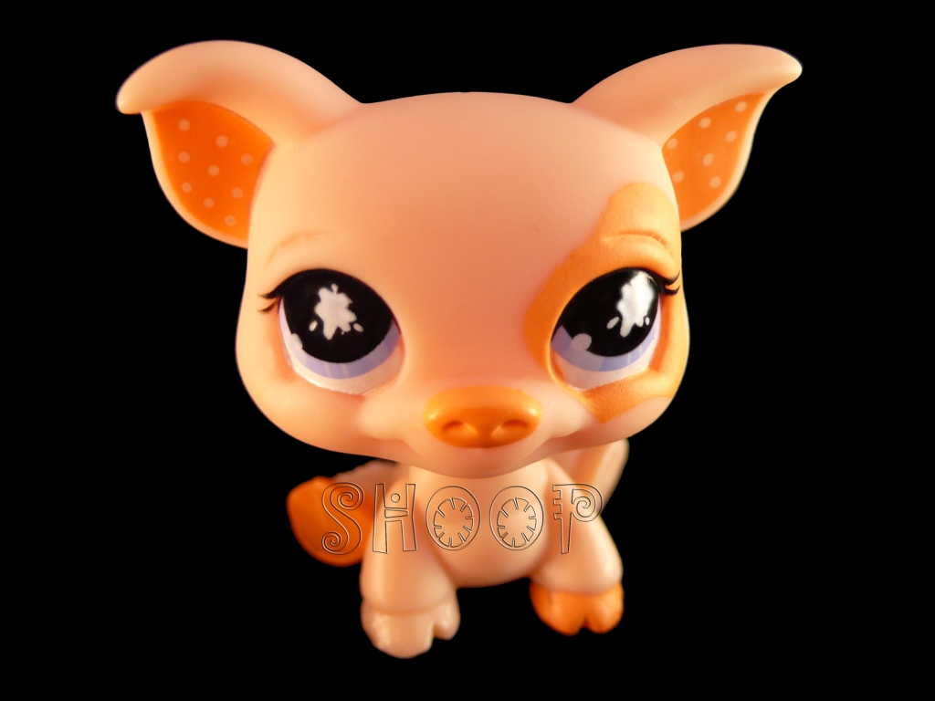 LPS 885
