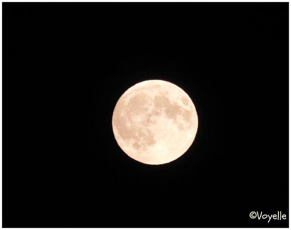 Bella la luna