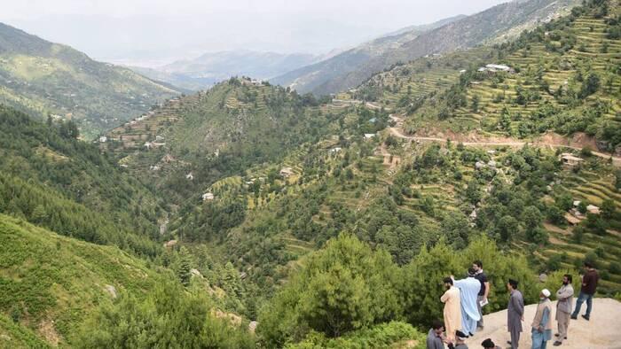 Au Pakistan, des centaines de millions d'arbres plantés contre la déforestation Par AFP
