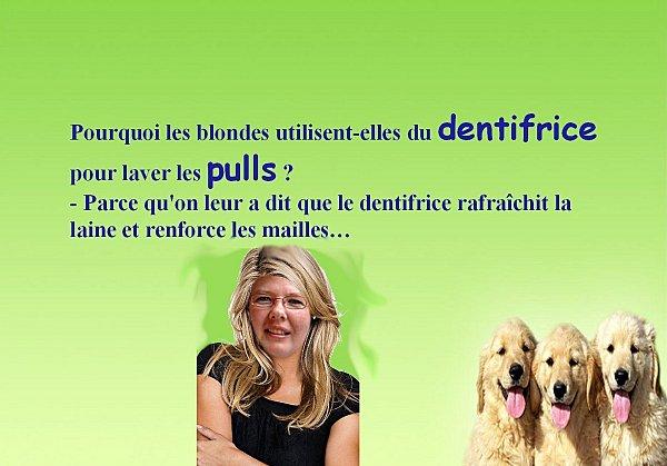 blague-blonde-7.jpg