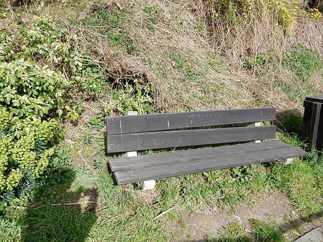 Les jardins participatifs d'Etterbeek