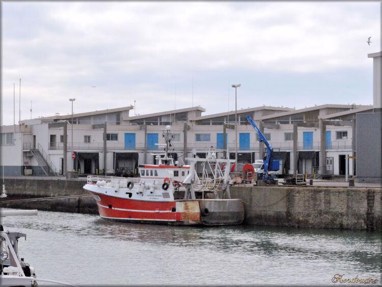 La Turballe, le port