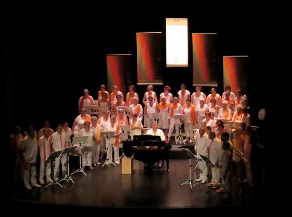 """""""Les Sans Voix"""" ont enthousiamé le public, lors de  leur dernier """"concert acoustique"""""""
