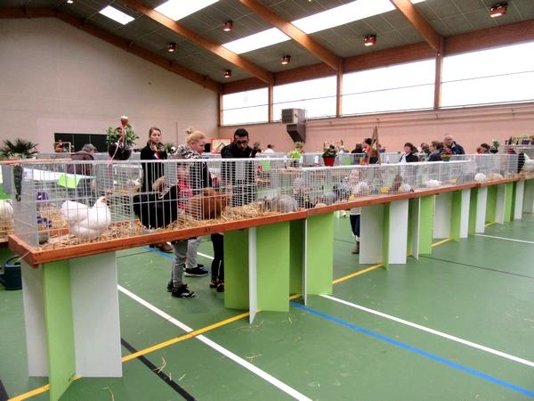 Le salon d'aviculture 20000 en 2018