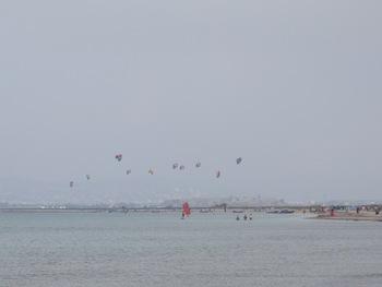 Le petit vent d'Est est favorable aux kite-surfs