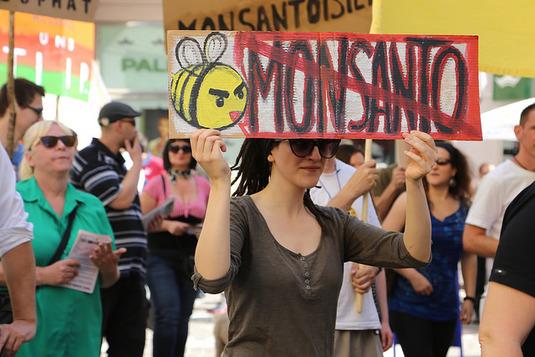 Les agriculteurs américains tournent le dos à Monsanto