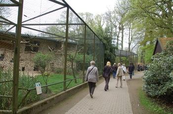 Naturzoo Rheine d50 2012 052