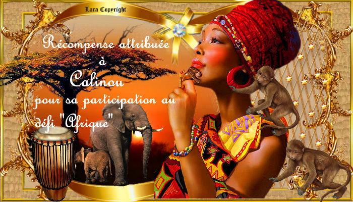 """Nos récompenses défi""""Afrique"""""""