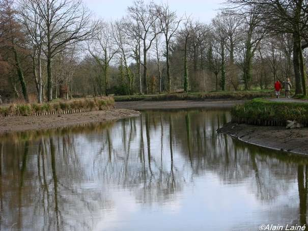 Canal_St_Gr_goire_22Janv08_003