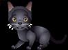 Curseurs animaux 5